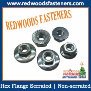 Nut Hex Flange Serrated
